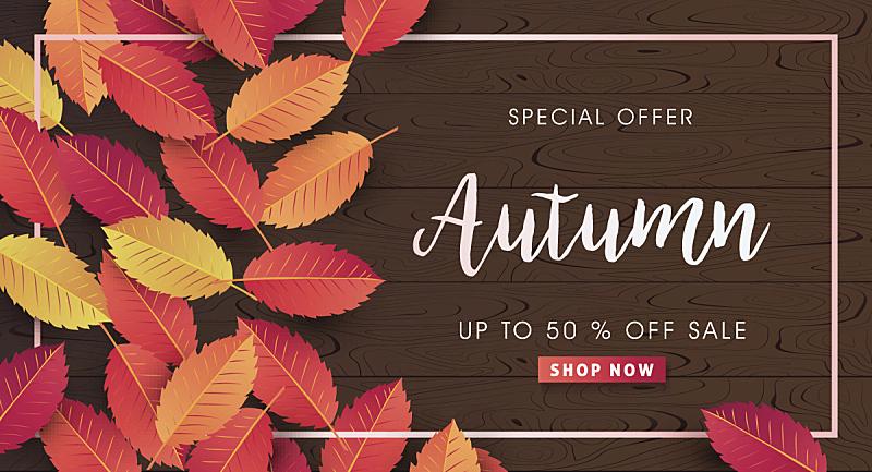 秋天,折扣商店,季节,传单,优惠券,叶子,标语,商业广告标志,字体,网上购物