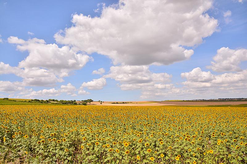 自然,欧洲,天空,草地,水平画幅,地形,山,无人,乡村,蓝色