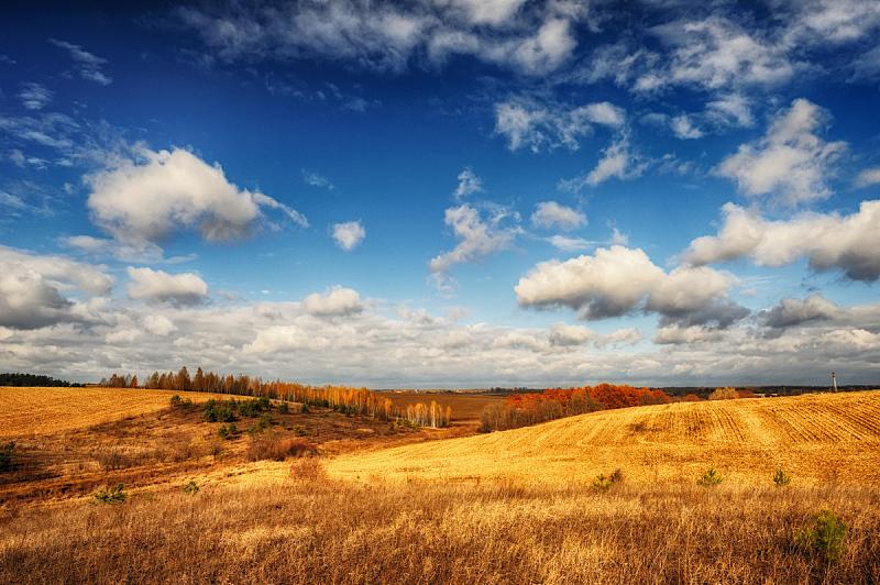 山,田地,秋天,白桦,天空,自然美,小树林,美,水平画幅,形状