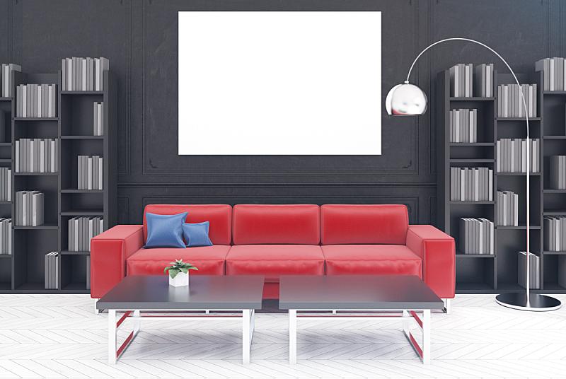 沙发,黑色,起居室,红色,水平画幅,无人,家庭生活,架子,家具