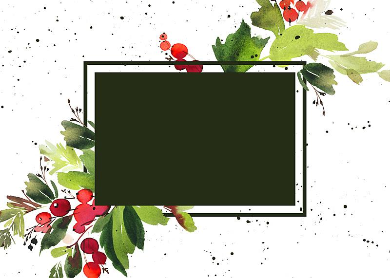 贺卡,浆果,云杉,水彩画,绘画插图,新的,边框,艺术,水平画幅