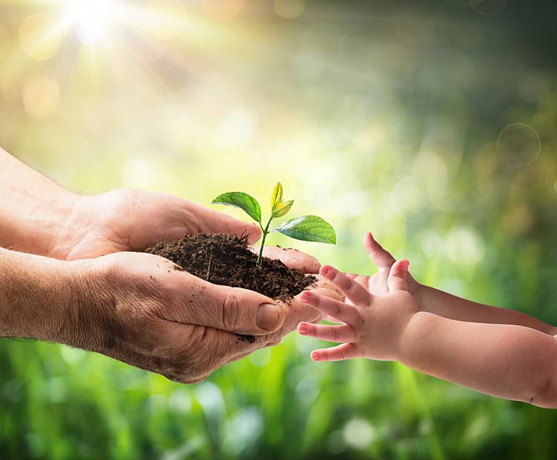 植物,老年男人,儿童,水平画幅,地球日,古老的,部分,新生活,光,成年的