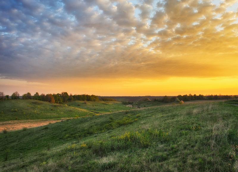 春天,河流,草地,早晨,雾,山谷,清新,自然界的状态,环境,云