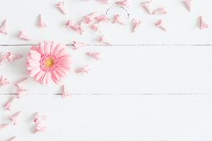 粉色,木制,视角,背景聚焦,平铺,白色,非洲雏菊,深情的,母亲节,花瓣