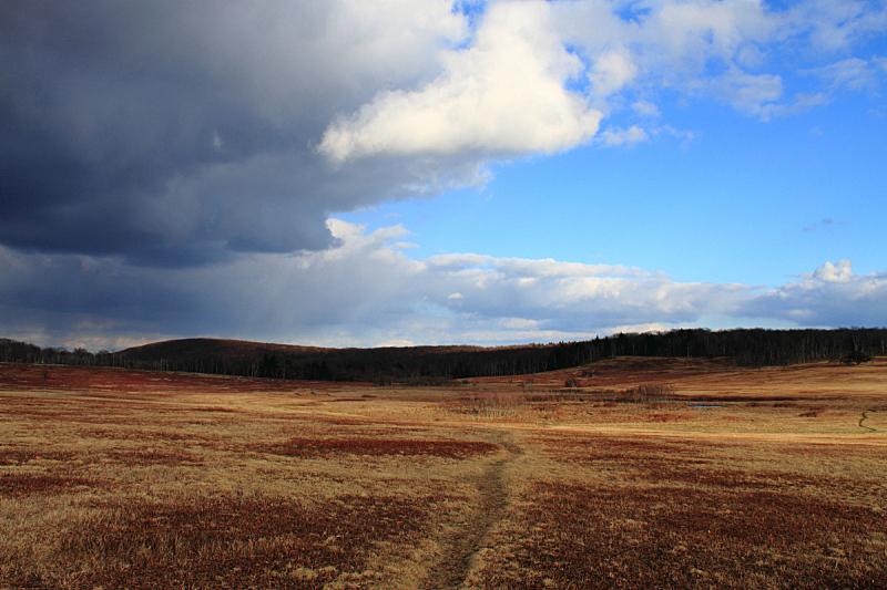 小路,草地,水平画幅,地形,无人,云,户外,云景,维吉尼亚,徒步旅行
