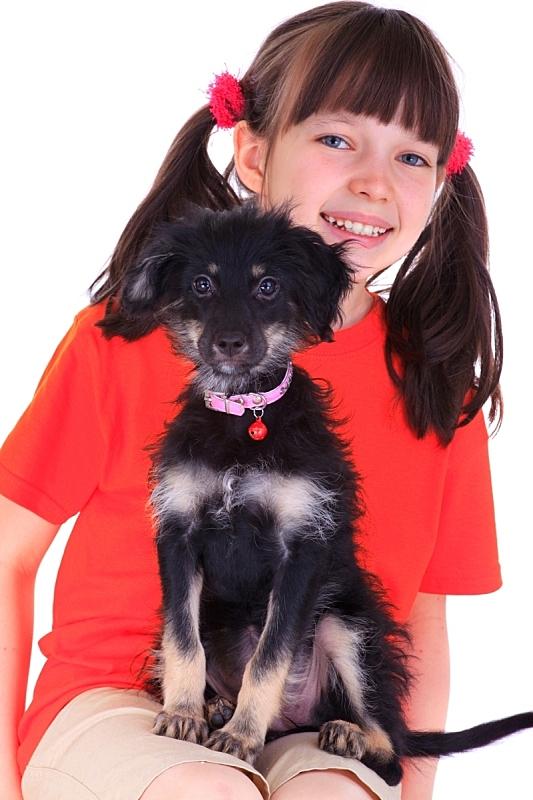 小狗,女孩,垂直画幅,美,青少年,美人,白人,彩色图片,坐,相伴