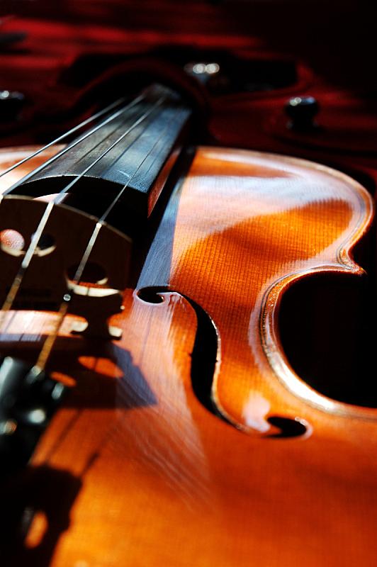 小提琴,大提琴盒,小提琴盒,吉他盒,奶油糖,法郎符号,大提琴,英文字母f,琴码,指板