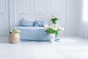 郁金香,卧室,蓝色,室内,篮子,花瓶,脆弱,美,水平画幅,无人