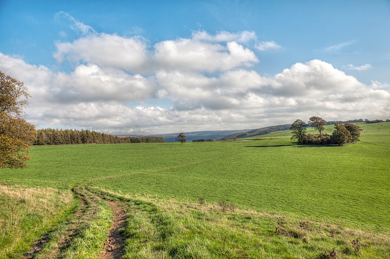 德比,水平画幅,无人,英格兰,户外,草,田地,国内著名景点