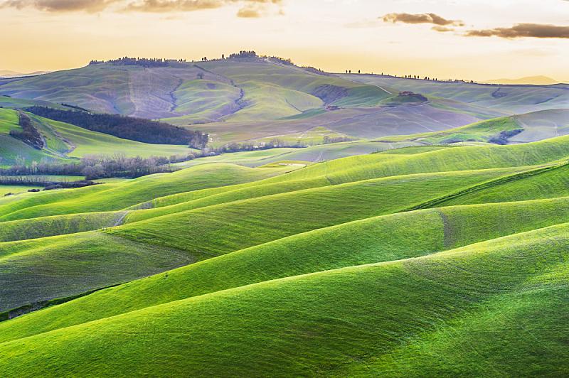 托斯卡纳区,意大利,晴朗,田地,水平画幅,山,无人,早晨,夏天,户外