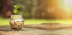 救球,广口瓶,存钱罐,储蓄,有钱人,银行,匈牙利,大量物体,讲故事