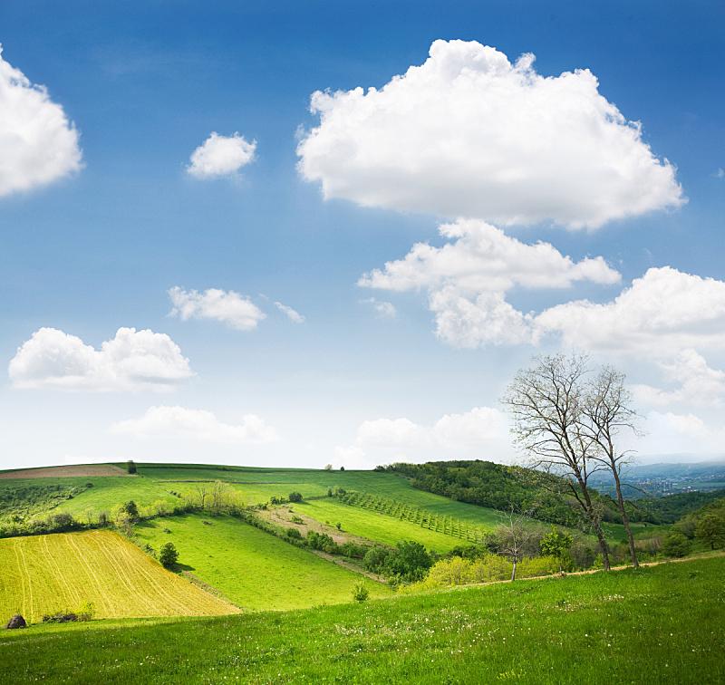 山,日光,白昼,农舍,风景,草,户外,地形,塞尔维亚,翻滚