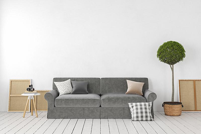 空的,沙发,植物,三维图形,绘画插图,白色,空白的,室内,枕头,墙