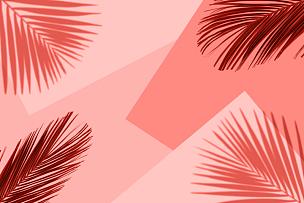 概念,夏天,极简构图,鸡尾酒,珊瑚,平铺,棕榈叶,彩色背景,异国情调
