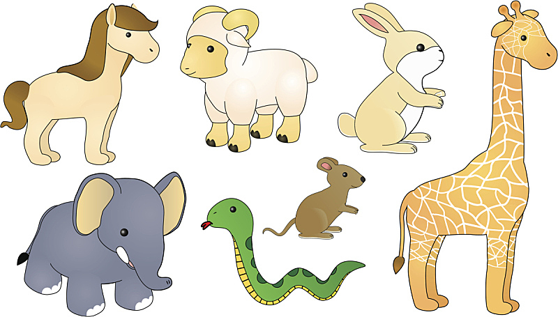 可爱的,动物,小兔子,小长颈鹿,无人,蛇,小象,兔子,婴儿,幼小动物