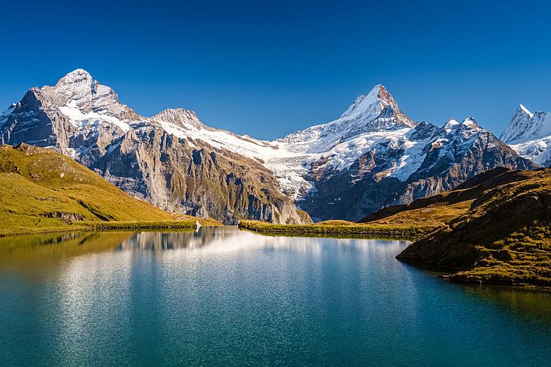 瑞士,徒步旅行,本尼斯阿尔卑斯山,格林德瓦,安静,山脊,草,户外,草地,山脉