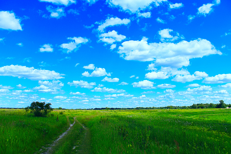 夏天,田地,云,乡村路,白色,天空,水平画幅,沙子,无人,户外