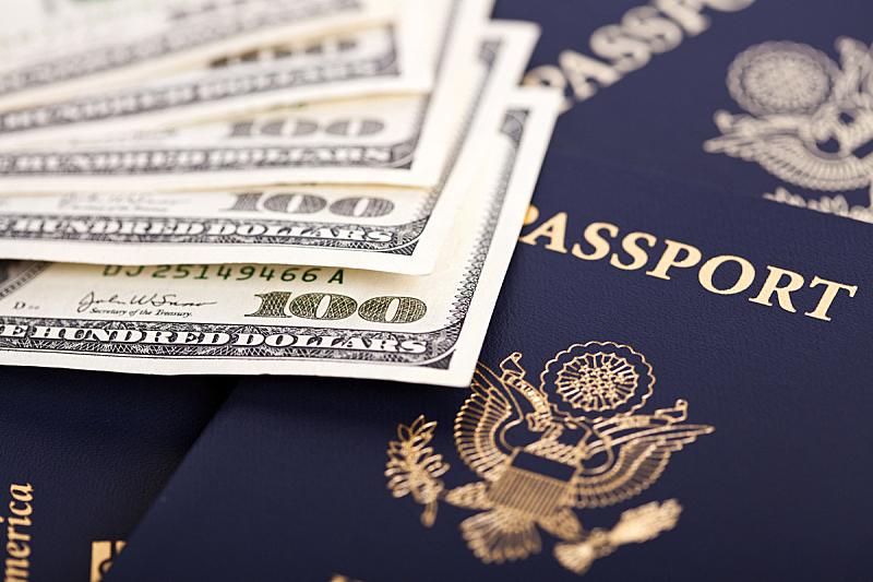 护照,白头鹰,选择对焦,水平画幅,无人,符号,身份证,美洲,文档,美国百元钞票