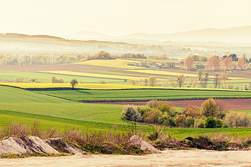 田地,地形,房屋,山谷,水平画幅,无人,早晨,夏天,户外,植物