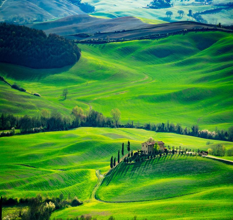 维得斯卡,托斯卡纳区,皮恩札,柏树,丘陵起伏地形,自然,水平画幅,绿色,地形,山