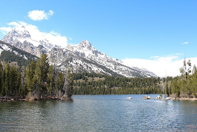 湖,山脉,大提顿国家公园,雪山,雪,怀俄明,自然美,春天,提顿山脉,户外