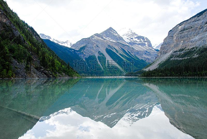 罗布森山省立公园,罗伯逊山,加拿大落基山脉,大不列颠哥伦比亚,加拿大,在底端,省立公园,鲜绿色,水平画幅,枝繁叶茂