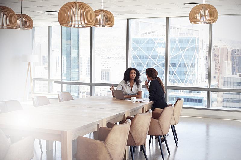 两个人,会议,会议室,女商人,使用手提电脑,商务会议,办公室,公司企业,仅女人,40到49岁