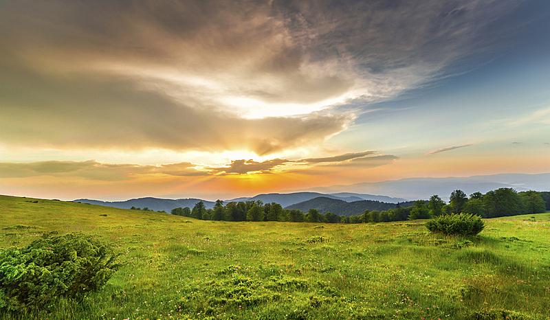 绿色,在上面,田地,天空,水平画幅,尖的,无人,户外,草,日落