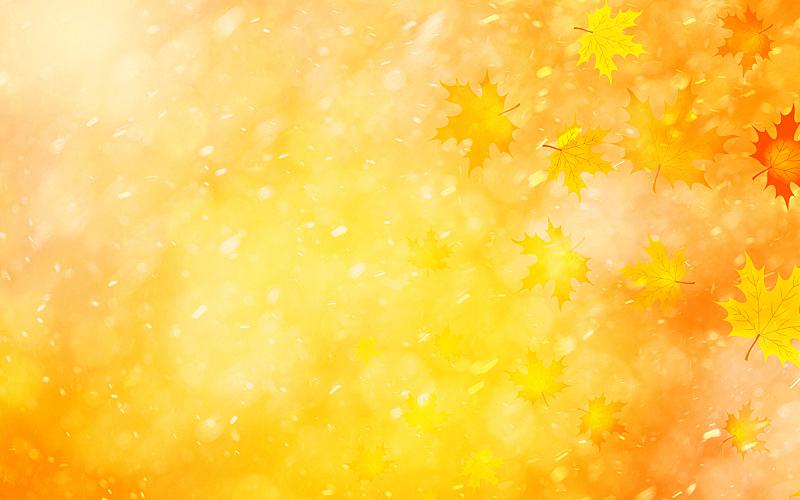 秋天,叶子,明亮,季节,金色,背景,彩色图片,幻想,十月,美