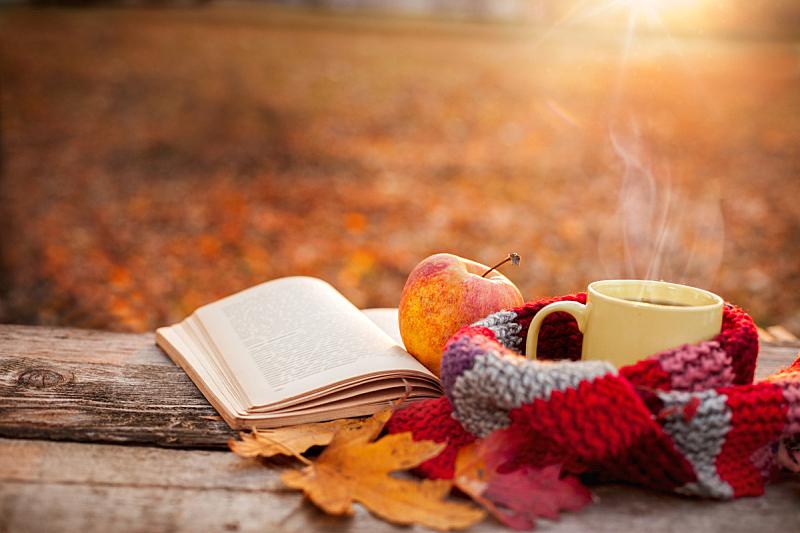 苹果,书,热,围巾,开着的,马克杯,茶,留白,温度,水平画幅