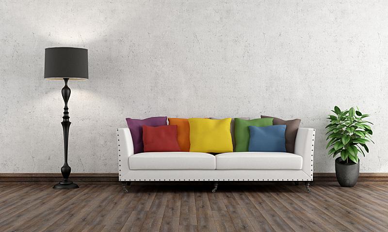 沙发,起居室,多色的,落地灯,水平画幅,墙,无人,硬木地板,古典式,灯
