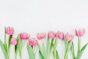 郁金香,母亲节,粉色,贺卡,背景,时尚,春天,平铺,花,上装