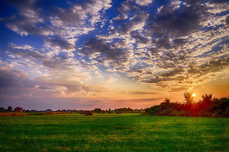 天空,田地,水平画幅,无人,草坪,夏天,户外,草,明亮,植物