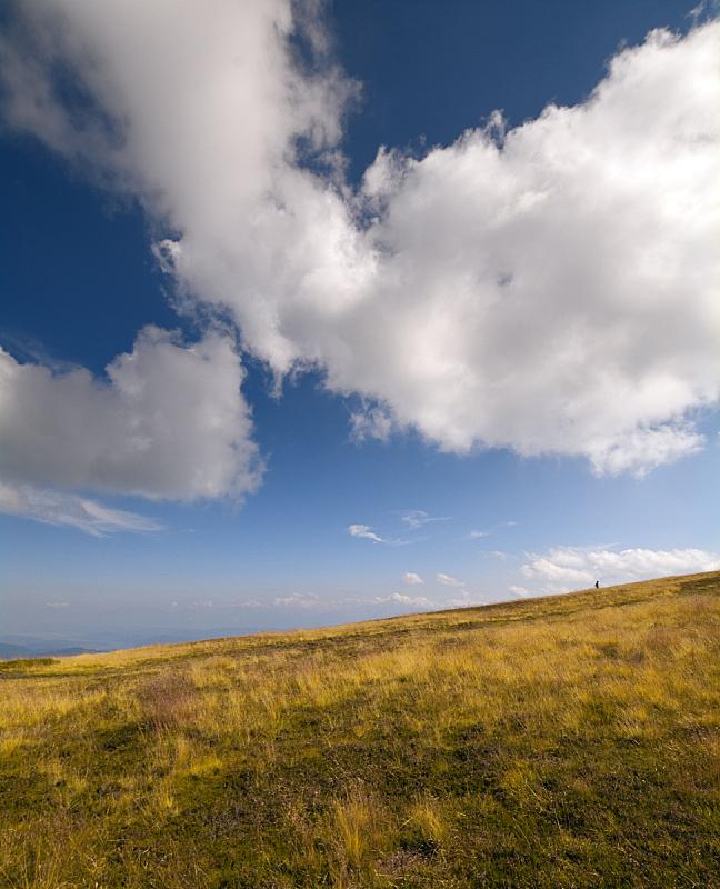 卡林斯亚,奥地利,山,地平线,垂直画幅,草原,无人,夏天,户外,草