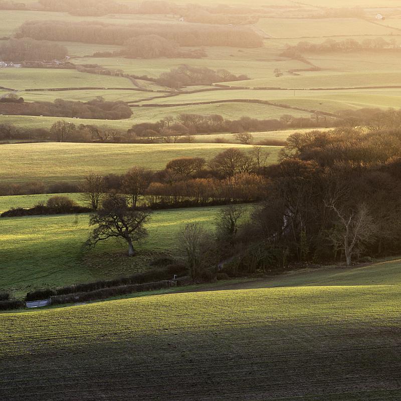 黄昏,冬天,日光,耙子,自然,绿色,地形,秋天,无人,英格兰