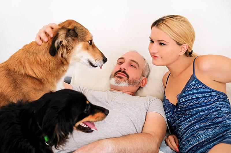 粗毛柯利狗,家庭生活,早晨,卧室,狗,床,幸福,异性恋,宠物,享乐