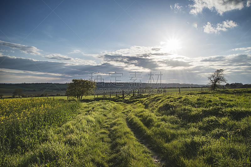 英格兰,田地,地形,在上面,自然美,墙梯,南丘,天空,美,日落