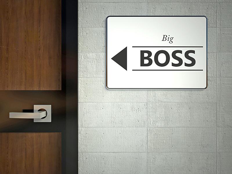 标志,巨大的,悬挂的,工头,办公大楼,领导能力,住宅房间,褐色,水平画幅,建筑