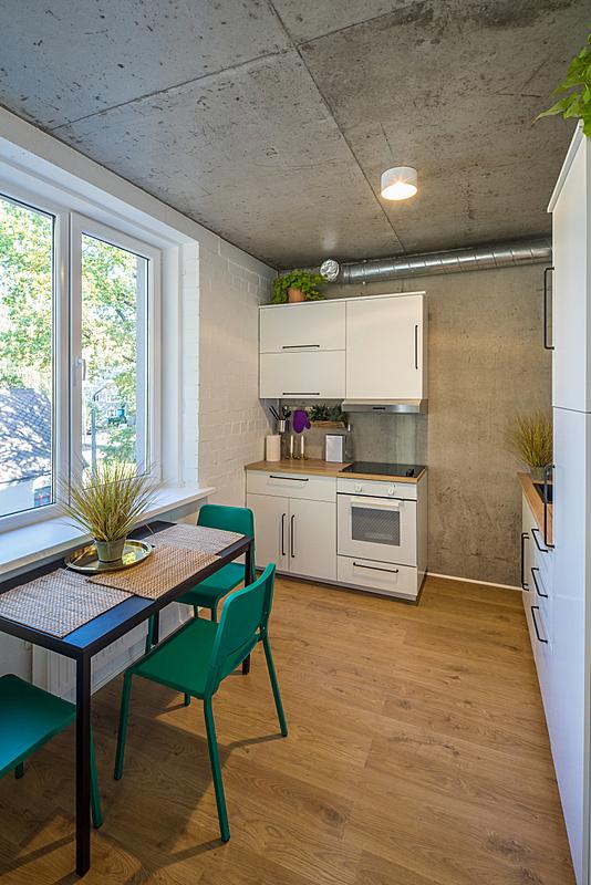 公寓,现代,厨房,居住区,饭厅,拉脱维亚,水泥,房屋,华贵,平坦的