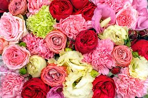 背景,色彩鲜艳,芳香的,夏天,明亮,亲昵,花束,彩色图片,植物学,清新