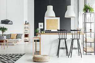 乡村风格,高雅,宽的,起居室,留白,水平画幅,灯,家具,明亮,反差