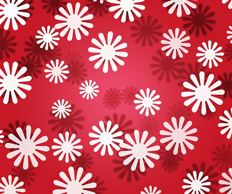 红松,白色,纹理效果,简单,仅一朵花,自然,水平画幅,无人,夏天,特写