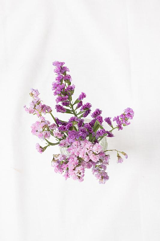 紫色,自然,垂直画幅,美,水香花菜,无人,正上方视角,浪漫,特写,花束