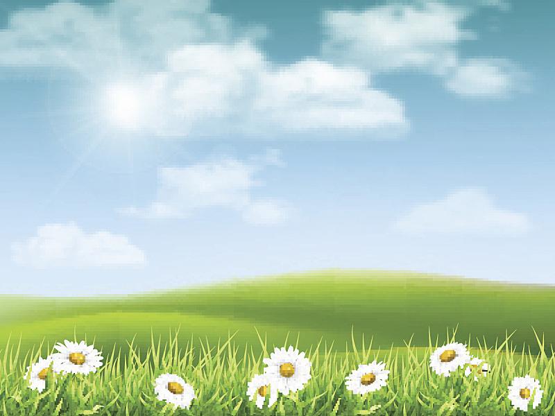 地形,甘菊,山,草,雏菊,天空,云景,云,太阳,风景