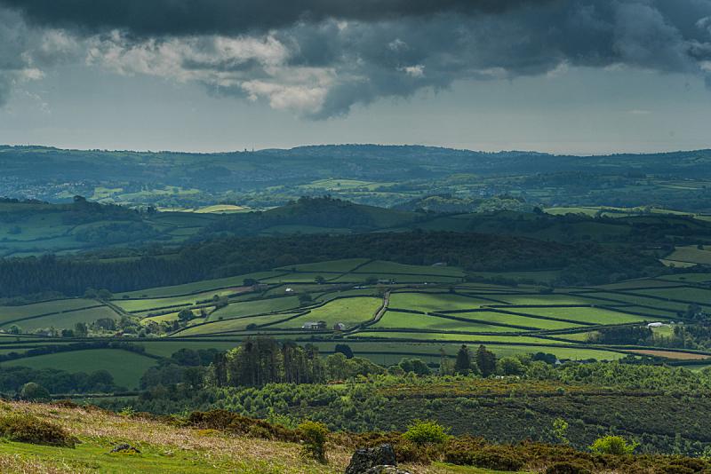 英格兰,风景,自然,草地,停泊的,旷野,摩尔人风格,水平画幅,岩石,无人