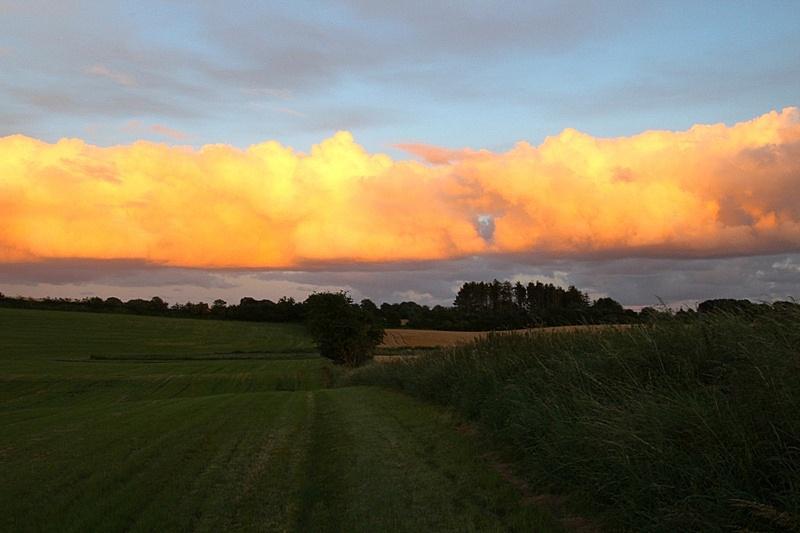 高积云,天空,美,褐色,水平画幅,无人,夏天,户外,草,云景