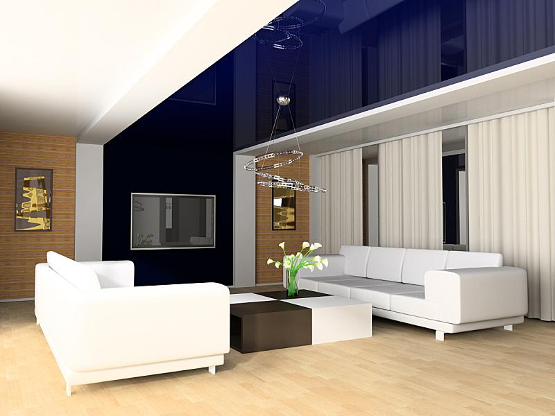 住宅房间,桌子,水平画幅,绘画艺术品,无人,蓝色,灯,现代,花束,沙发