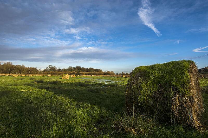 古老的,干草卷,自然,天空,水平画幅,绿色,无人,蓝色,户外,乡村风格