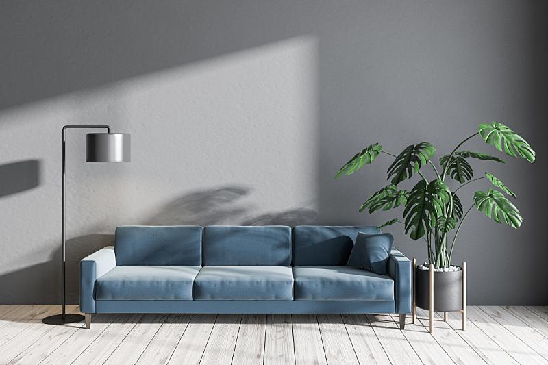 沙发,起居室,蓝色,灰色,空的,华贵,舒服,现代,植物,三维图形