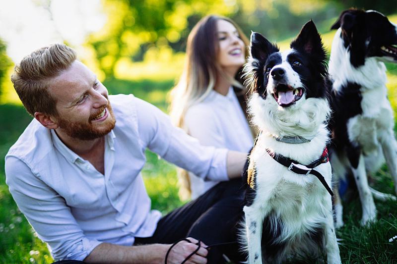 伴侣,狗,自然,自然美,美,休闲活动,水平画幅,夏天,户外,白人